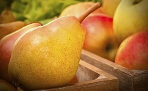 ябълки и круши